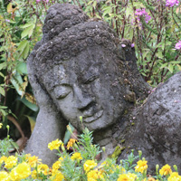 Botanischer Garten / André Heller